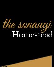 The Sonaugi